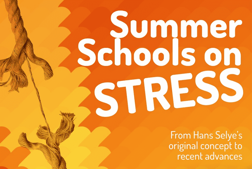 Summer School on Stress